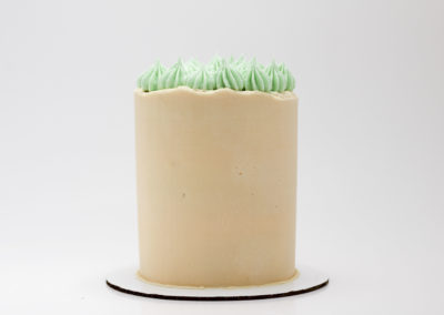 Ashkakes-Custom-Cakes-Cupcakes-50